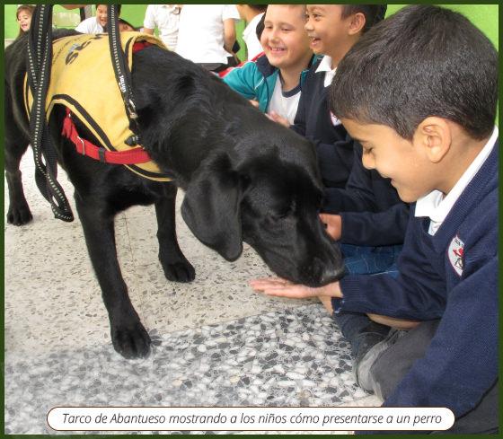 Terapia-Asistida-con-Labradores